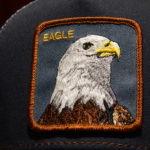 EAGLE(1)