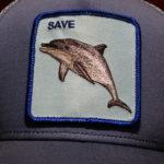 SAVE(1)